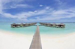 Paradise Island Resort & Spa 4*