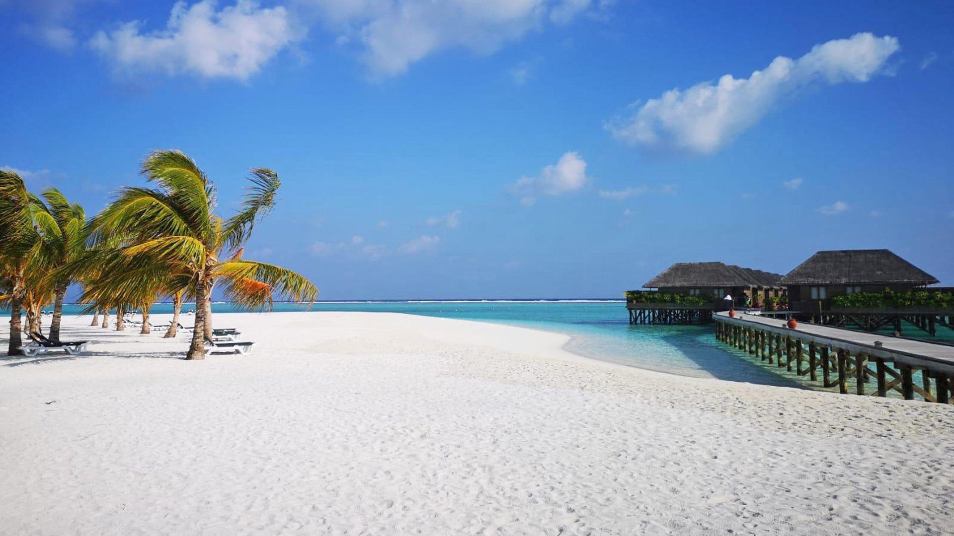 Sejur plaja Maldive, 12 zile - februarie 2022