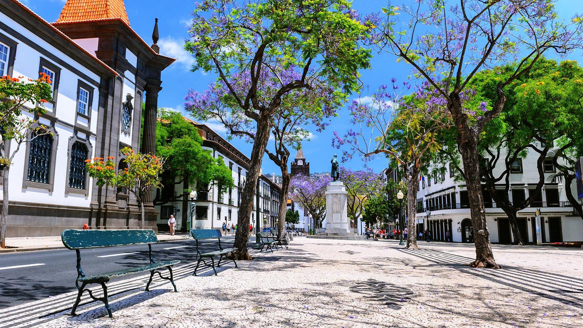 Sejur Charter Madeira, 8 zile - aprilie 2022