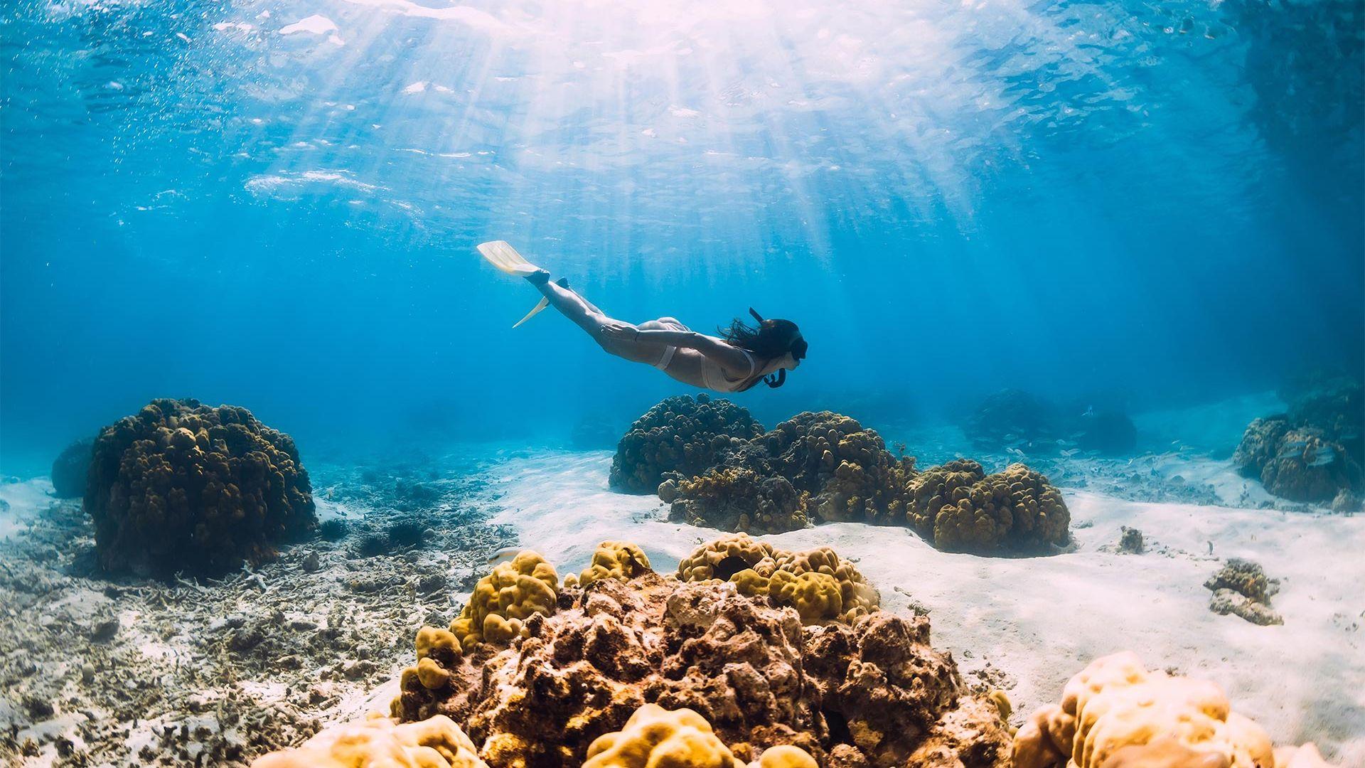 Sejur plaja Mauritius, 10 zile - 03 februarie 2022