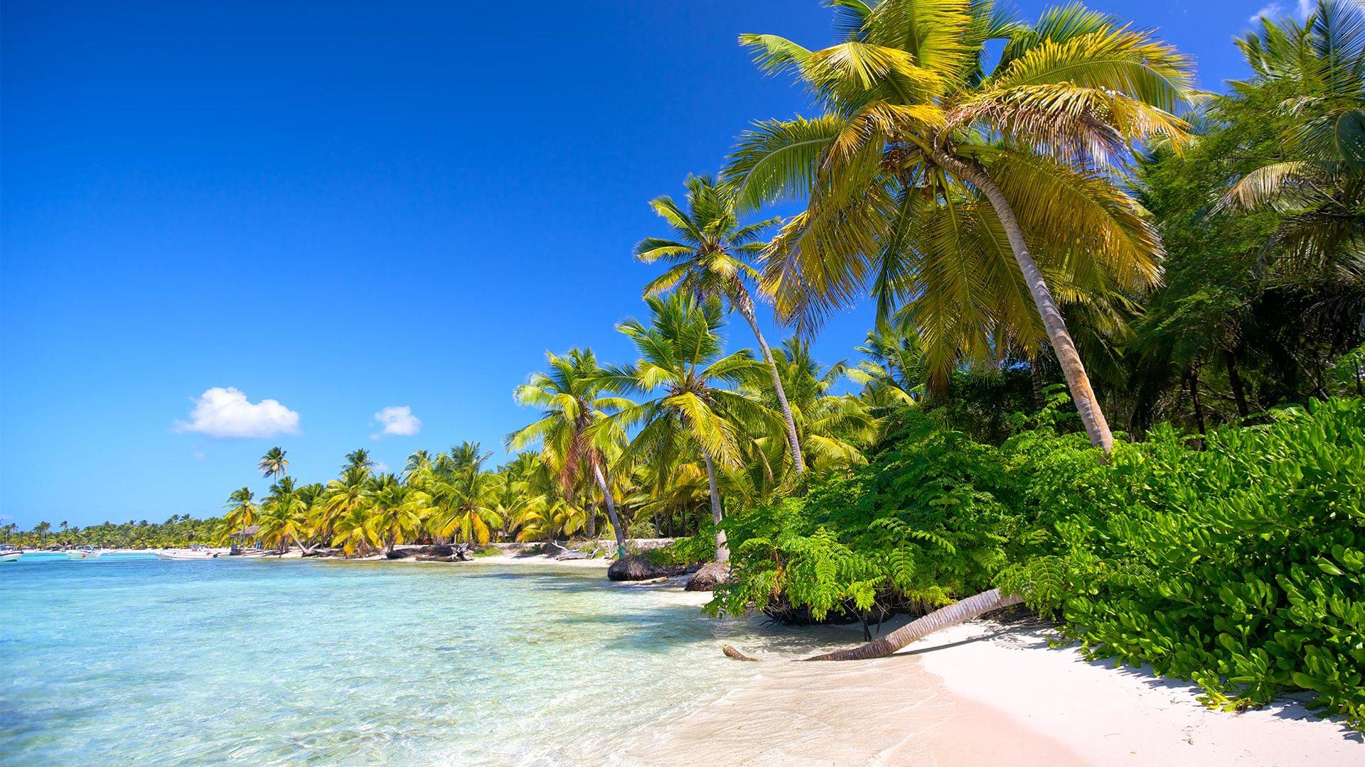 Sejur plaja Punta Cana, 9 zile - mai 2022