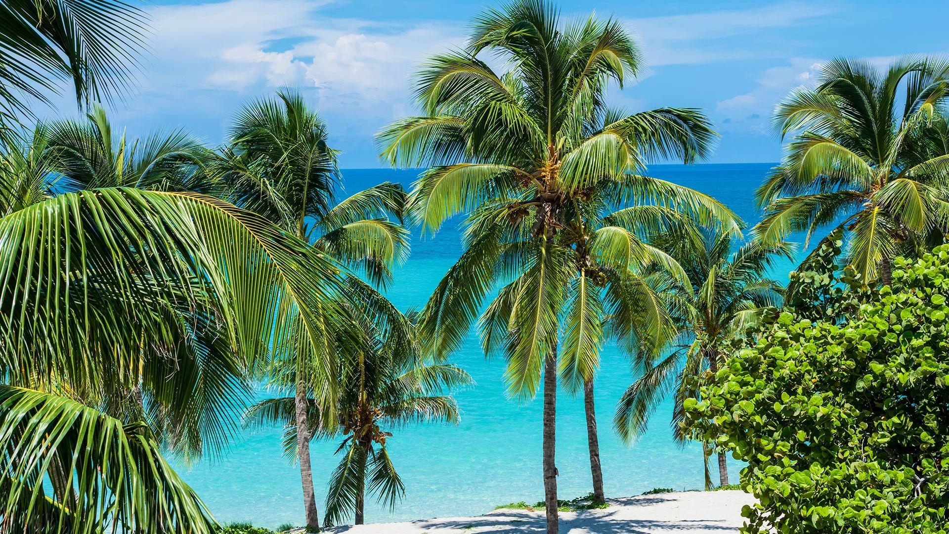 Revelion 2022 - Sejur plaja Varadero, Cuba, 9 zile