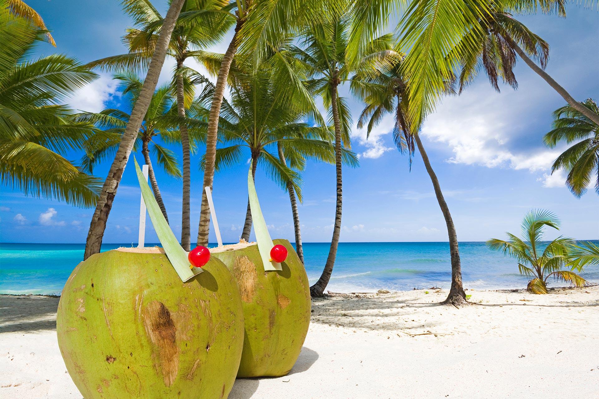 Craciun & Revelion 2022 - Sejur charter La Romana, Republica Dominicana 11 zile
