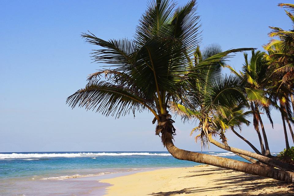 Sejur charter Iberostar Punta Cana, 9 zile - decembrie 2021