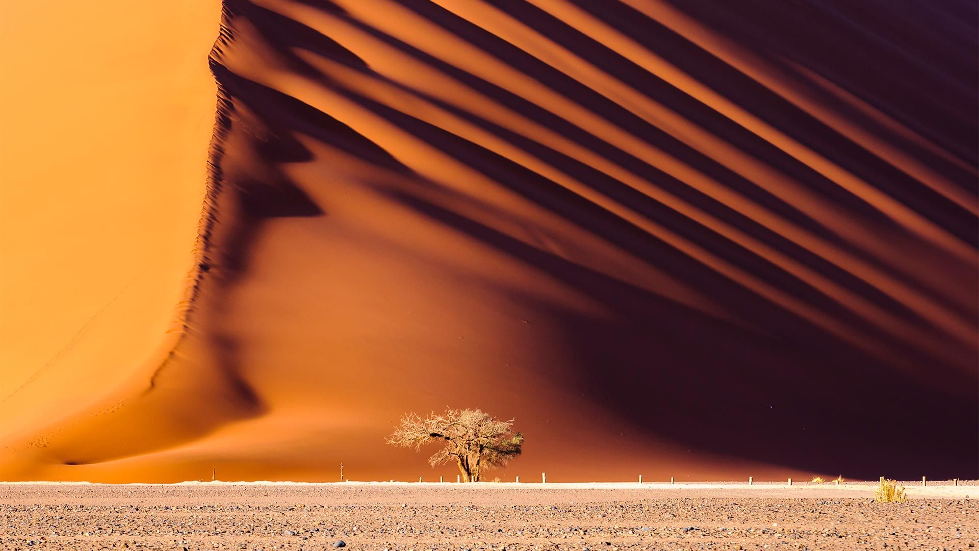 Circuit de grup - Essential Namibia, 12 zile - august 2022