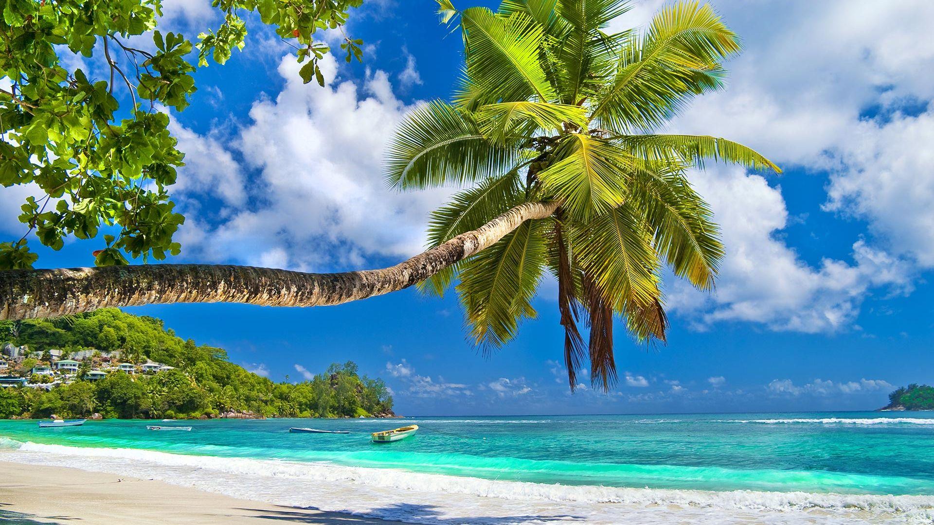 8 martie - Sejur Luxury Seychelles cu Razvan Pascu, 9 zile