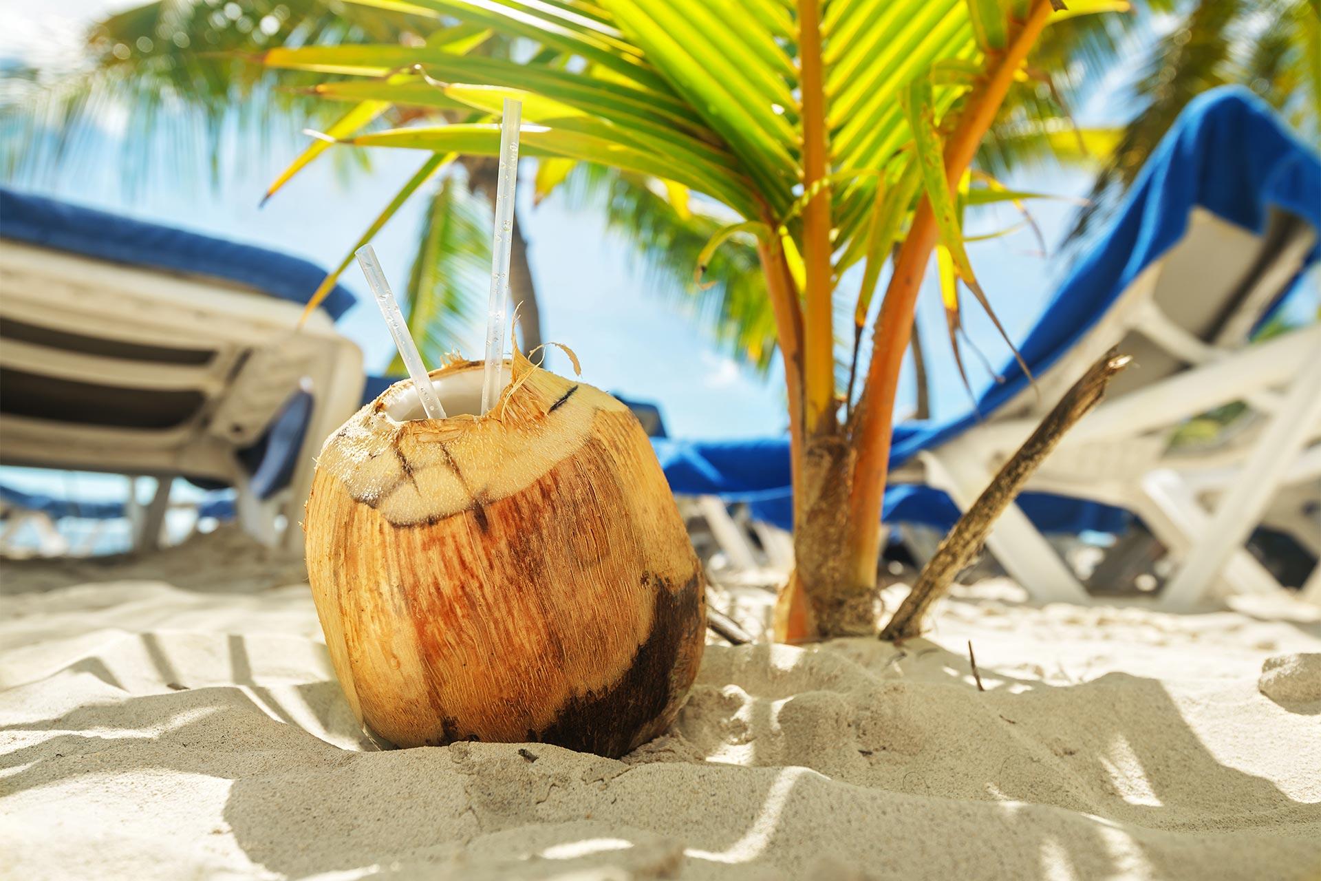 Craciun & Revelion 2022 - Sejur charter Punta Cana, 11 zile