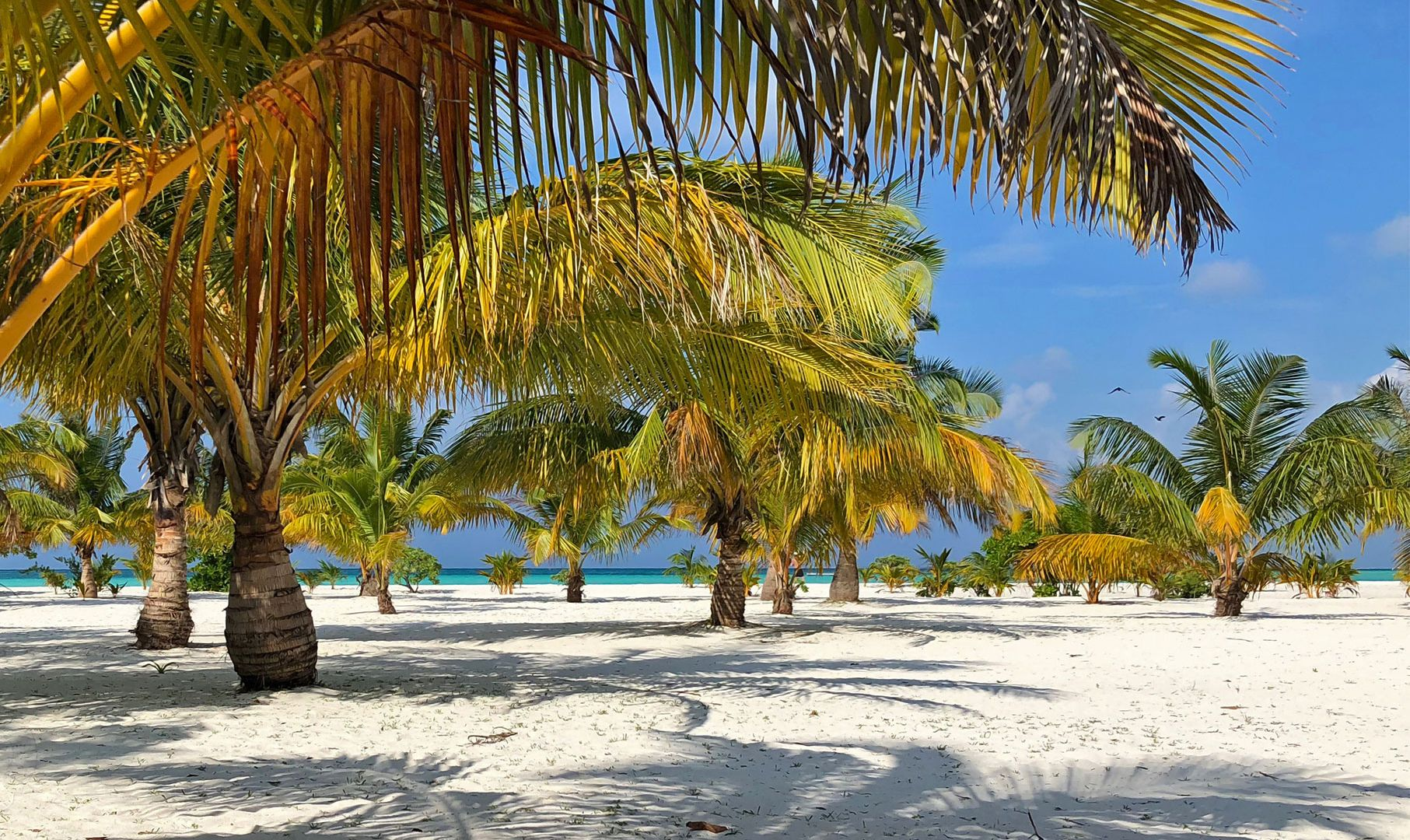 Paste 2022 - Sejur plaja Maldive, 12 zile