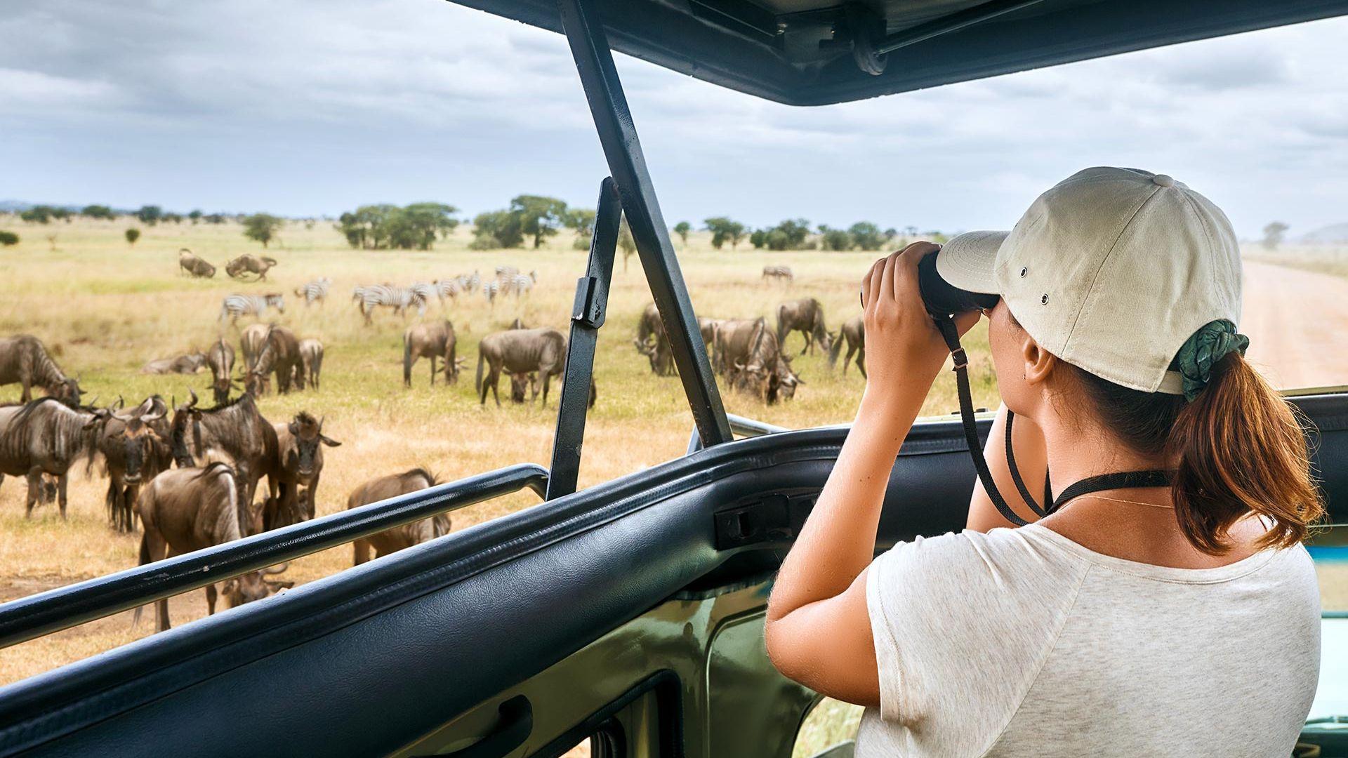 Share a Trip Charter Kenya - Safari Tsavo & plaja Diani Beach, 9 zile - 29 noiembrie 2021