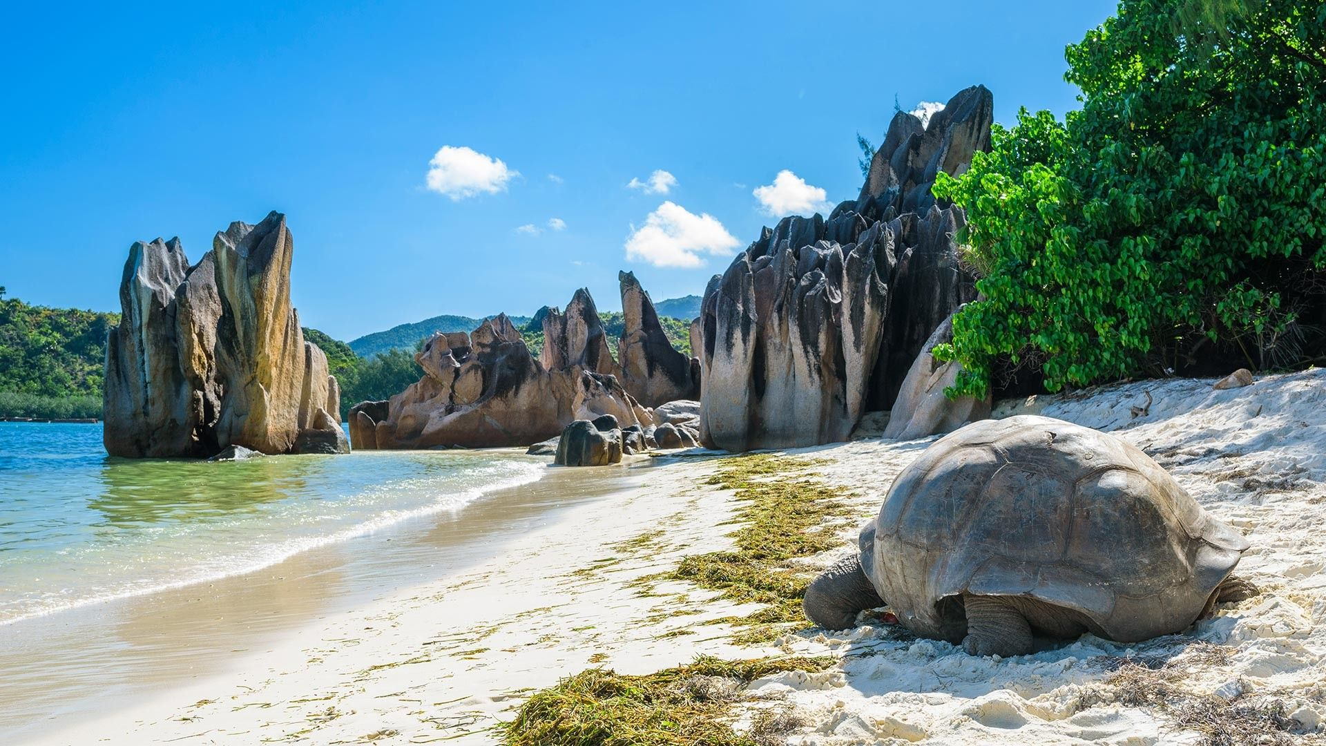 Sejur charter Insula Mahe, Seychelles, 9 zile